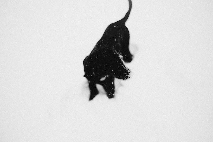 snow2013_blogalacart-1
