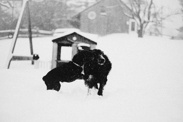 snow2013_blogalacart-3