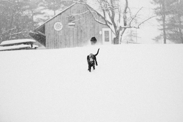 snow2013_blogalacart-4