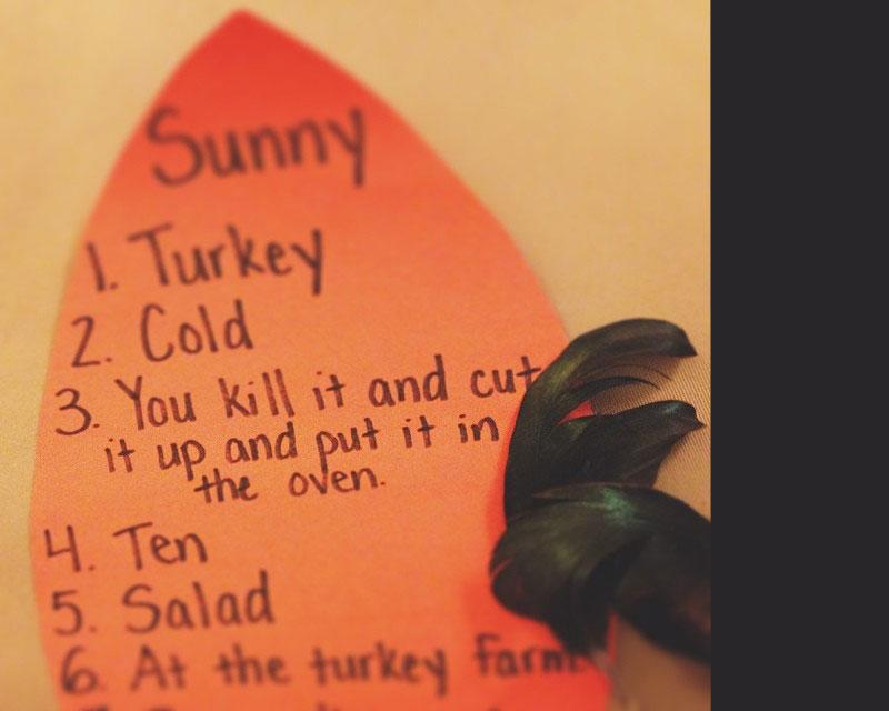 turkeyfeather