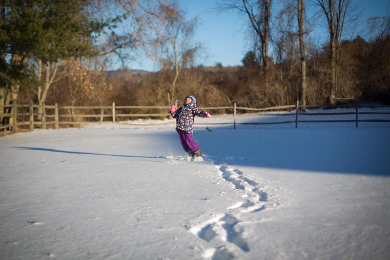snowglitter_2015_blogalacart-23