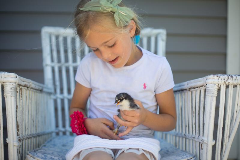 chicks_2015_blogalacart-2