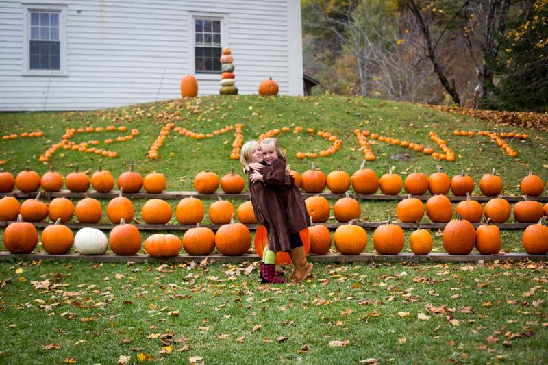 pumpkinpatch2015_blogalacart-10