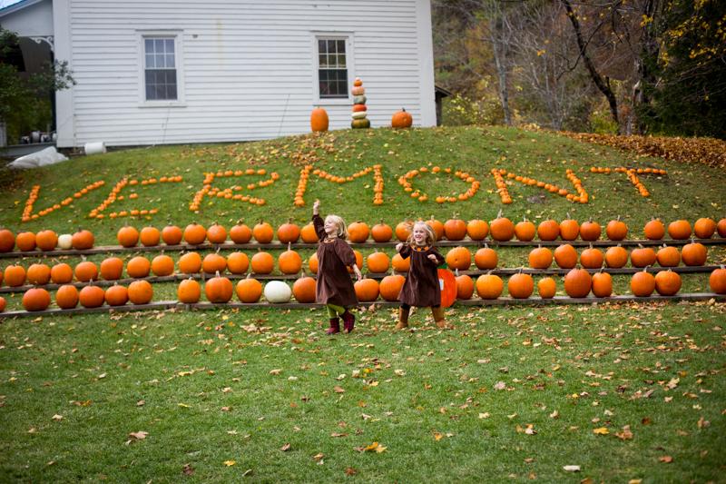 pumpkinpatch2015_blogalacart-7