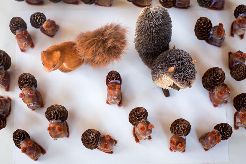 squirrels_blogalacart2015-2